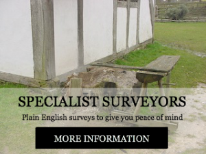 plain english surveys